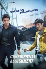 Confidential Assignment (2017)