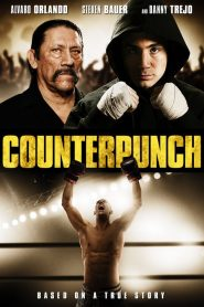 Counterpunch (2013)